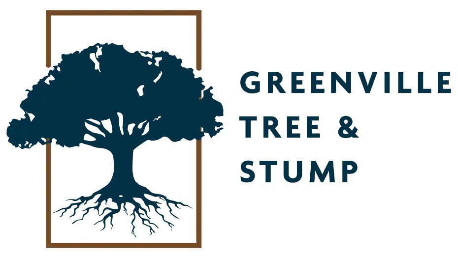 Greenville Trees and Stump